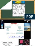 Capítulo 07 Entropía PPT