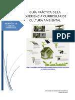 GRUPO 6 - GUIA PRÁCTICA 11.docx