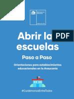 AbrirLasEscuelas-Araucania.pdf