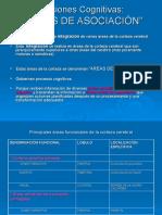21.- areas de asociación, 2007 lista