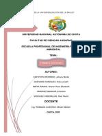 ORDEN DIPTERA.pdf