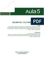 MATERIAL TEÓRICO DE VERMES.pdf