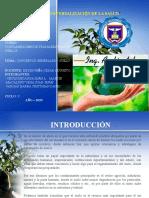 TRABAJO DE EXPOSICION.pptx