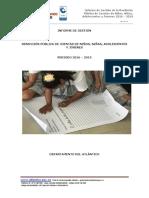informe_preliminar_rendicuenta_NNAJ_2016_2019