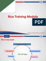 Rice Training Module_Sales