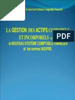 les Immobilsations.pdf