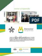 Presentación Bienestar apoyos socioeconómicos