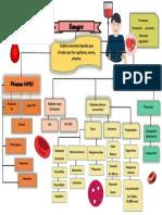 sangre mapa conceptual.pdf
