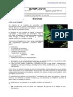 Material_Separata_01_Sistemas (2).docx