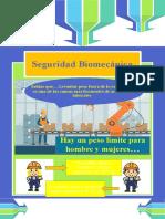 Seguridad Biomecánica.pptx