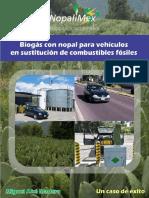 Generacin+de+Biogs