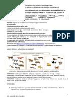 FORMATO GUIA PEDAGÓGICA NATURALES.docx