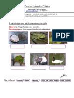 Ciencias Naturales 1ªbàsico17al21agosto