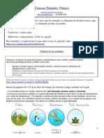 Ciencias Naturales 1ªbàsico20al24dejulio