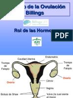 Rol de las hormonas