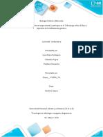 Actividad_Colaborativa _Grupo _ 151009A_761-Biologia Molecular