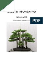 Boletín 33 web
