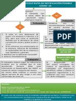 protocolo ruta de notificacion (1).pdf