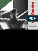 Relatório de comunicação - Desmontando Cassandra.pdf