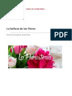 FLORISTERIA IVONNE Donastorg