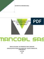 DIAGNOSTICO ORGANIZACIONAL EMPRESA MANCOBL SAS