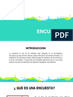 ENCUESTAS.pdf