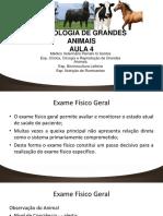 Aula-4-SEMIOLOGIA-DE-GRANDES-ANIMAIS.pdf