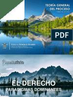 TEORIA GENERAL DEL PROCESO - UNIDAD 1 2019-II.pdf