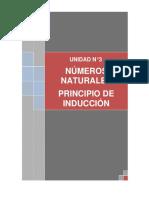 UNIDAD_N_3NUMEROS_NATURALESINDUCCION.pdf