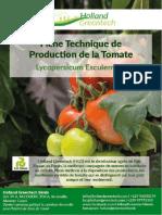 HGT Fiche Technique de Production de la Tomate (04082020) (1)