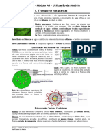 mduloa3-1-transportenasplantas