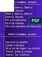 04 SFANT E DOMNUL SAVAOT