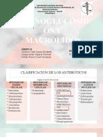 AMINOGLUCÓSIDOS Y MACRÓLIDOS.pptx