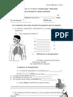 T sistema respiratorio 6h