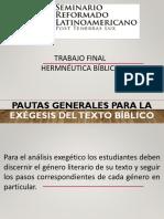 PAUTAS GENERALES PARA TRABAJO FINAL