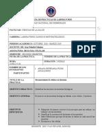INFORME 2 RECONOCIMIENTO DE CÉLULAS CON TINCIONES..docx