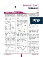 Pamer geometría4