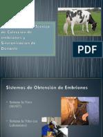 10.Introducción a la Técnica de Colección de embriones Expo.ppt