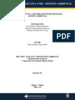 MAPA CONCEPTUAL CATEGORIAS DE INSTRUMENTOS DE GESTIÓN AMBIENTAL