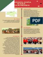 GUARDIANES DE LA MADRE TIERRA COMUNIDAD INDÍGENA U´WA