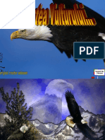 renasterea vulturului