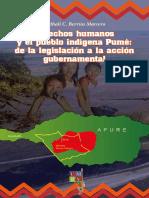 Derechos Humanos y la etnia Pume