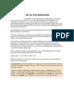 Bioquímica-de-la-Germinación