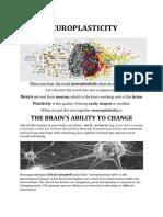 neuroplasticity blog - 09142020