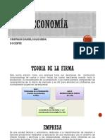 TEORIA DE LA EMPRESA-1