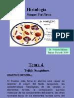 1. TEJIDO SANGUINEO