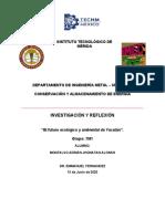 ACTIVIDAD FINAL - FUTURO ECOLOGICO Y AMBIENTAL DE YUCATÁN - MONTALVO ADRIÁN