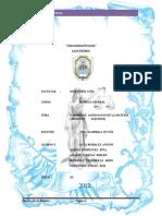 CARATULA  DE INGENIERIA.docx