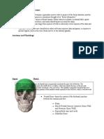 Nature of Maxillofacial Trauma
