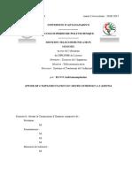 redaction final soutenance ravo.pdf